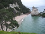 CATHEDRAL COVE - NZ